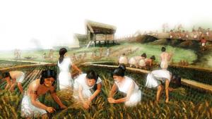 The farmer lifestyle